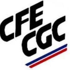 Représentativité CFE-CGC : 2017 -2020